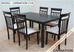 CARNATION (1+4)